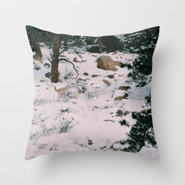 Coyotes on the hunt Throw Pillow