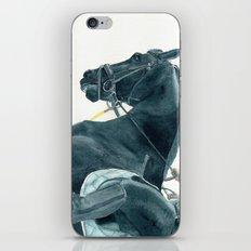 Friesian Horse 2 iPhone Skin
