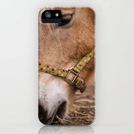 horse by Lesly Juarez iPhone Case