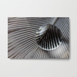 Droplet on feather Metal Print