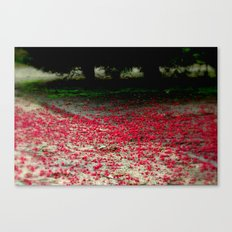 Ground Coverage Canvas Print
