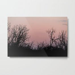 i'm up in the woods, down on my mind Metal Print