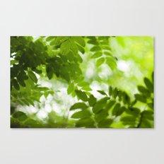 Green Dreams 4348 Canvas Print