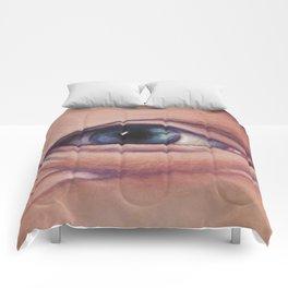 walter Comforters