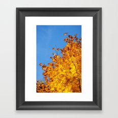 Herbstfarben  Framed Art Print