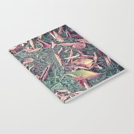 Autumn Leaves Before September Photography Nature Fall Colors Summer #GaneneKPhotography Notebook