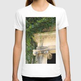 Ionic Ivy, Boston T-shirt