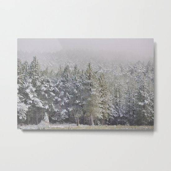 """Into the woods"". At 2.500 meters hight Metal Print"