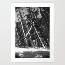 Natural Triangle Art Print