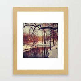 Carol II Framed Art Print
