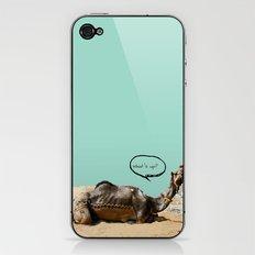 Pushkar fair chillout iPhone & iPod Skin