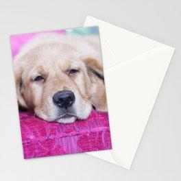 Dog by Nicola Dreyer Stationery Cards
