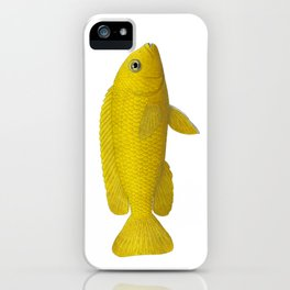 Malawi cichlids Chindongo saulosi female iPhone Case