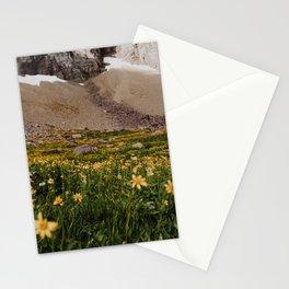 Glacier Wild Flowers Stationery Cards