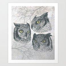 Three Owls Art Print