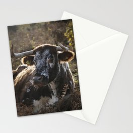 Long Horn Cow Stationery Cards