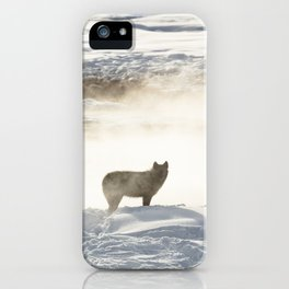 Yellowstone National Park - Wolf and Hot Spring iPhone Case