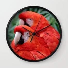 Red Scarlet Macaw Wall Clock