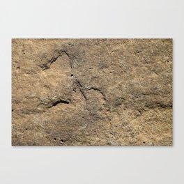 Stone paving Canvas Print