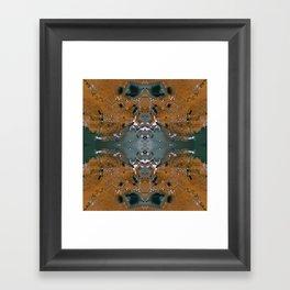 Earth Mandala 05 Framed Art Print