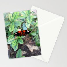 Butterfly Red Stationery Cards