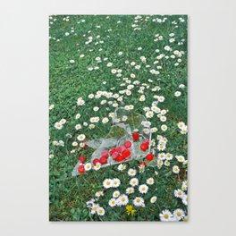 Daisies & Candies Canvas Print