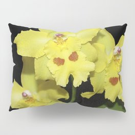 Glorious Golden Orchid - Odontonia Yellow Parade Alpine Pillow Sham