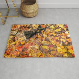 Autumn Leaves - Abstract Photography Rug