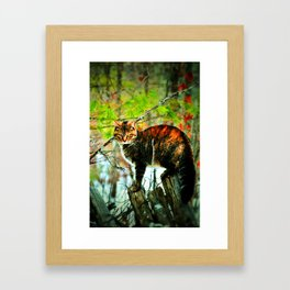 Cat the Huntress Framed Art Print