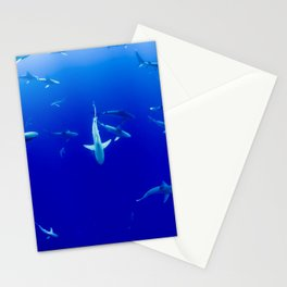 Sharks! Stationery Cards