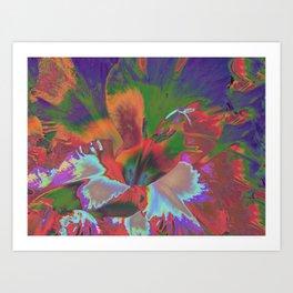 Extreme Gladiolus Art Print