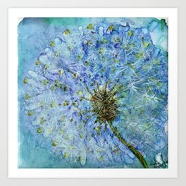 Dandelion By Heather Hayes Art Print
