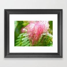 Pink Costa Rican Flower Framed Art Print