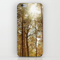 The Air I Breathe iPhone & iPod Skin