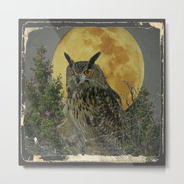 SHABBY CHIC ANTIQUE NIGHT OWL  FULL MOON Metal Print