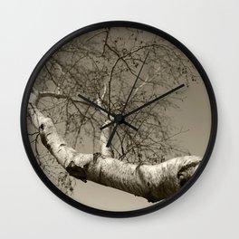 Birch tree #01 Wall Clock