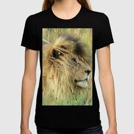 Leo Panthera African lion T-shirt
