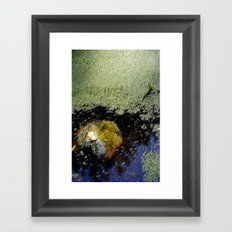 Yellow leaf in the water Framed Art Print
