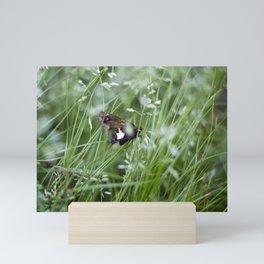 Sliver spotted skipper moth Mini Art Print