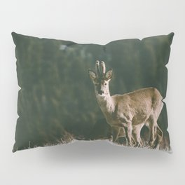 Hello spring! - Landscape and Nature Photography Pillow Sham