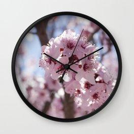 Flowers @ Chimayo NM Wall Clock
