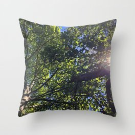 trees and sunshine Throw Pillow