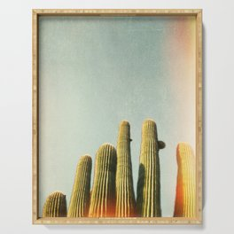 California photography, California Wall Art, Palm Springs Serving Tray