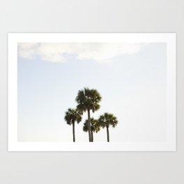 Four Palms Art Print