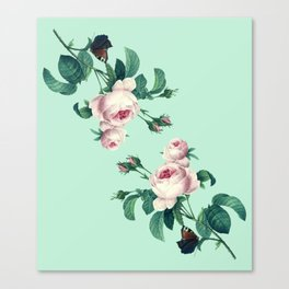 Roses Mint Green + Pink Canvas Print