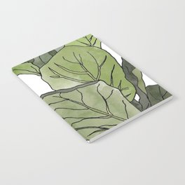 Ficus Lyrata Potted Plant.. Notebook