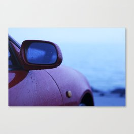 Rain Slick Canvas Print