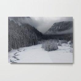 Snowy Morning Metal Print