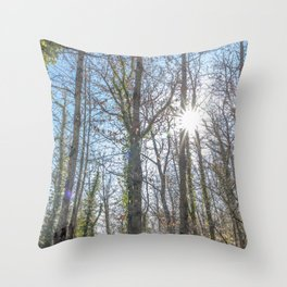 Sunrays on the forest Throw Pillow