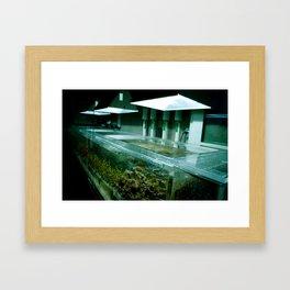 Shedds Framed Art Print
